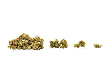 How Much Cannabis Can I Buy in Colorado?